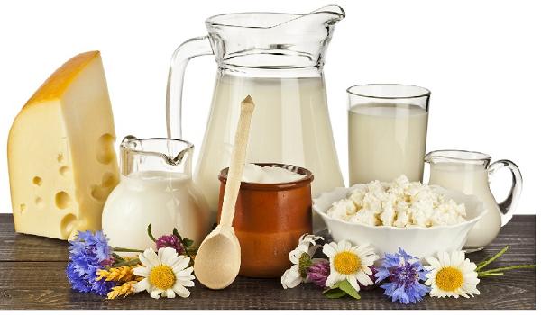 5 mẹo vặt cách bảo quản, chế biến sữa và các chế phẩm của sữa