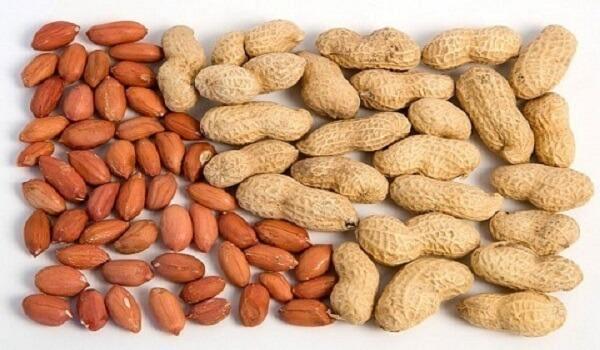 Đậu phộng không chỉ giúp làm đẹp, hỗ trợ giảm cân mà còn rất tốt cho tiêu hóa